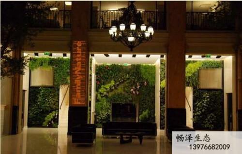 净化空气的室内植物墙.jpg